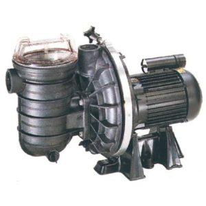 Pompe per piscina Sta-Rite - serie 5p2r Standard - Monofase - Trifase .-0